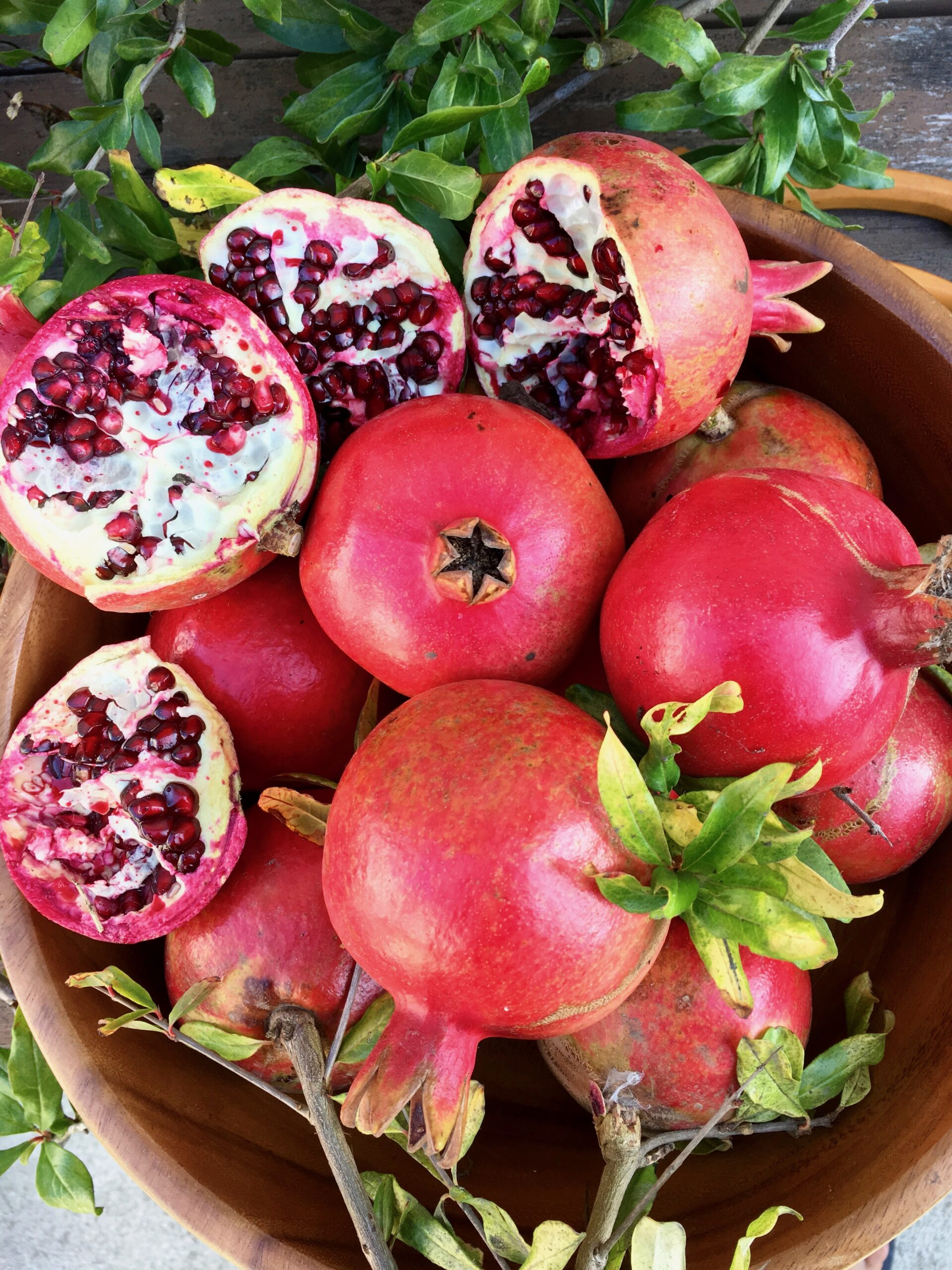 fall fruit pomegranate