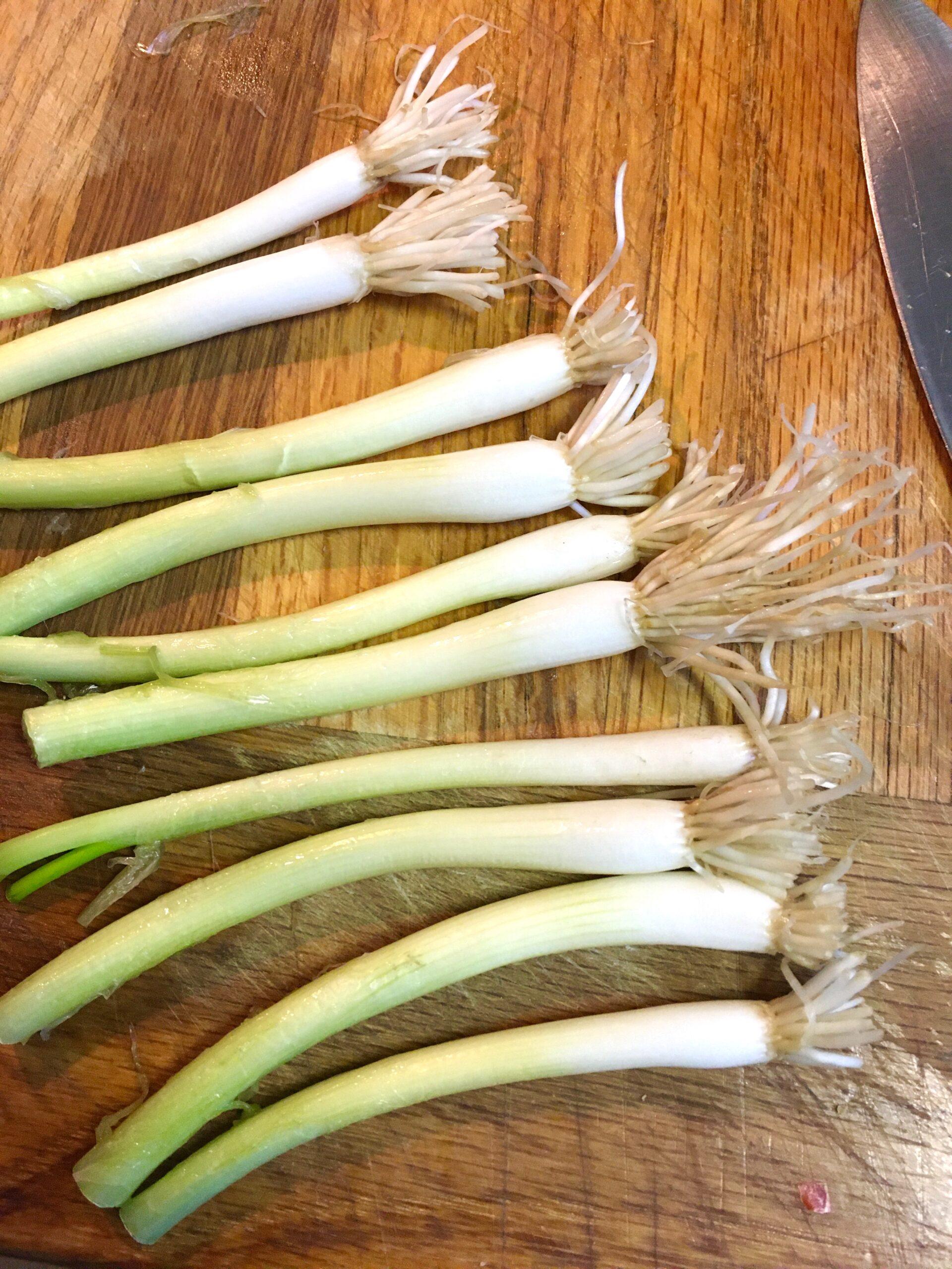 grow spring onions
